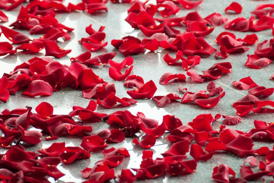 rosenblaetter