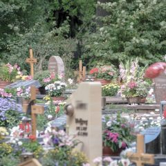 Bestattung, Beerdigung, Beisetzung – wo liegt der Unterschied?